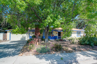 Ojai Single Family Home Active Under Contract: 818 Grandview Avenue