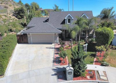 Thousand Oaks Single Family Home For Sale: 1440 Corte De Primavera