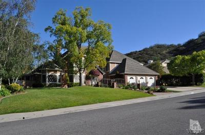 Agoura Hills Single Family Home For Sale: 29538 Weeping Willow Drive