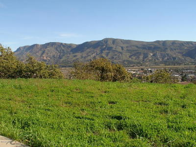 Santa Paula Residential Lots & Land For Sale: 593 Glade Drive