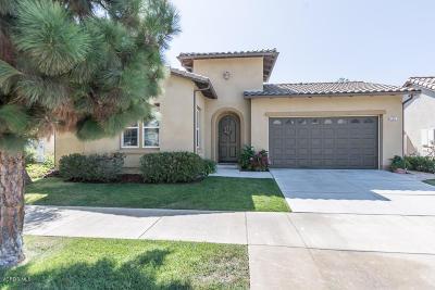 Ventura Single Family Home For Sale: 8212 Medford Street