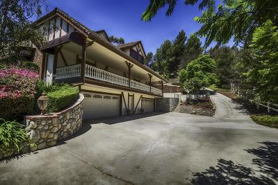 Camarillo Single Family Home For Sale: 11869 Barranca Road