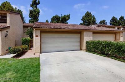 Ventura Single Family Home For Sale: 877 Miller Court