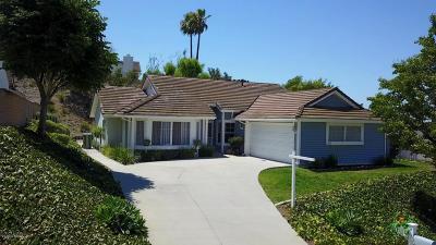 Thousand Oaks Single Family Home For Sale: 48 Cantera Street