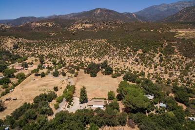 Ojai Single Family Home For Sale: 12772 Treeranch Road