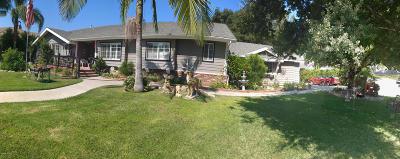 Santa Paula Single Family Home For Sale: 1013 Cliff Drive
