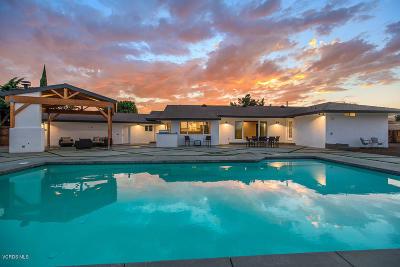 Thousand Oaks Single Family Home For Sale: 1194 Calle Elaina