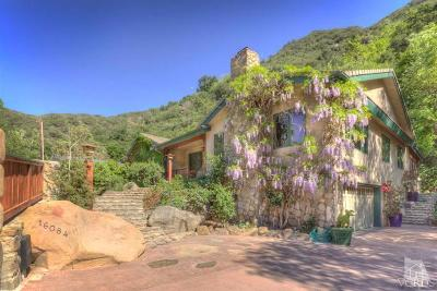 Ojai Single Family Home For Sale: 16084 Maricopa Highway