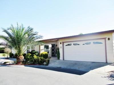 Ventura Single Family Home For Sale: 60 Poinsettia Gardens Drive