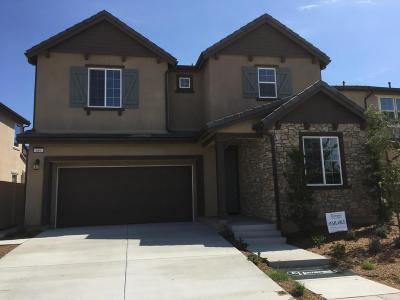 Oxnard Single Family Home For Sale: 684 Platte Way
