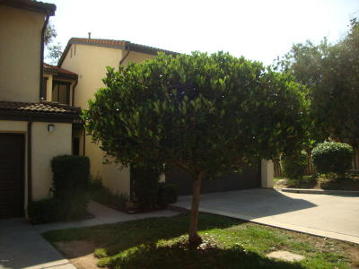 Santa Paula Single Family Home Active Under Contract: 498 Wendy Lane