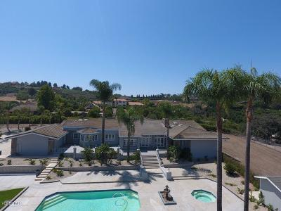 Somis Single Family Home For Sale: 3839 Groves Place