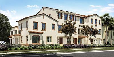 Camarillo Single Family Home For Sale: 168 Sawbuck Street