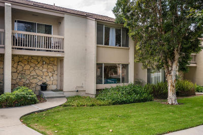 Ventura Single Family Home For Sale: 1451 Iguana Circle