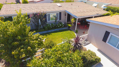 Ventura Single Family Home For Sale: 117 Poinsettia Gardens Drive