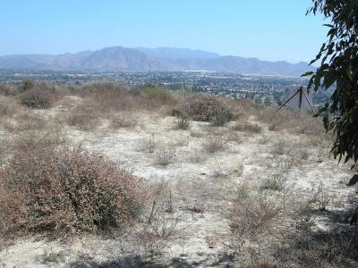 Camarillo Residential Lots & Land For Sale: East Highland Drive