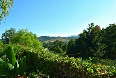 Thousand Oaks Single Family Home For Sale: 2341 Mountain Crest Circle