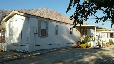 Single Family Home For Sale: 52101 Maxine Avenue
