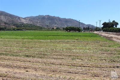 Santa Paula Residential Lots & Land Active Under Contract: 17550 South Mountain Road