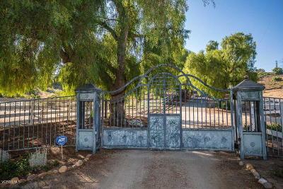 Moorpark Single Family Home For Sale: 6061 Gabbert Road