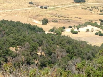 Residential Lots & Land For Sale: Shangri - La Ojai