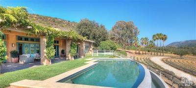 Ojai Single Family Home For Sale: 9599 Ojai Santa Paula Road