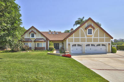Santa Rosa (ven) Single Family Home For Sale: 2850 Yucca Drive