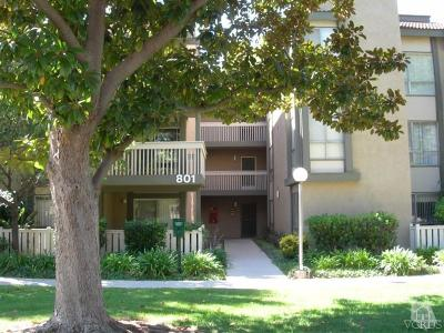 Ventura County Rental For Rent: 801 Pinetree Circle #13