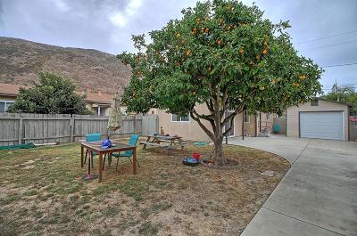 Ventura Single Family Home For Sale: 236 Leighton Drive