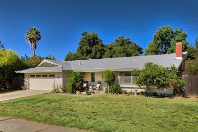 Ojai Single Family Home For Sale: 1317 Meadowbrook Road