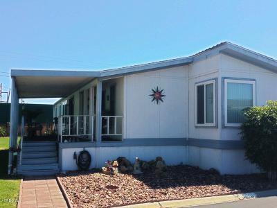 Ventura County Mobile Home For Sale: 250 E Telegraph Road #317