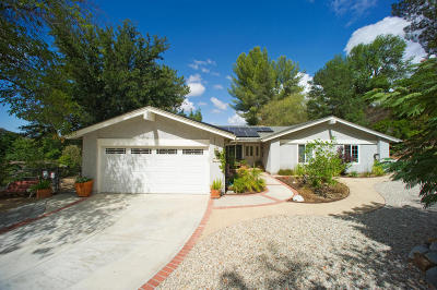 Agoura Hills Single Family Home For Sale: 3940 Jim Bowie Road