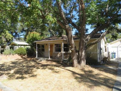 Ojai Single Family Home Active Under Contract: 428 S Padre Juan Avenue