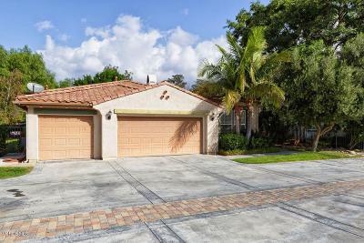 Santa Paula Single Family Home For Sale: 1214 Grant Line Street