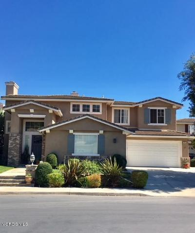 Newbury Park Single Family Home For Sale: 856 Paseo De Leon