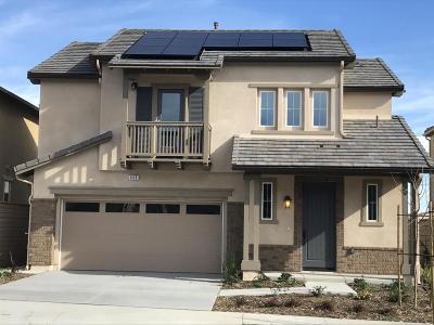 Camarillo Single Family Home For Sale: 668 Silver Sage