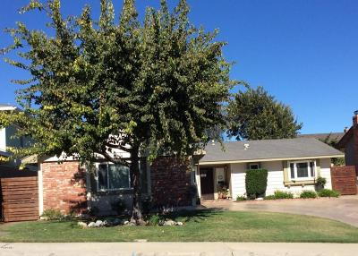 Santa Paula  Single Family Home Active Under Contract: 429 Steckel Drive