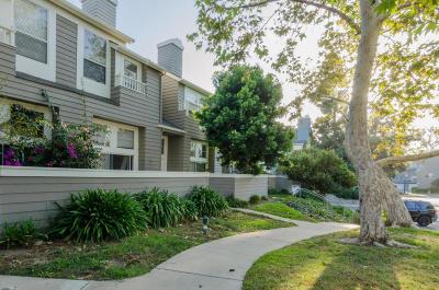 Ventura Single Family Home For Sale: 1090 Gilbert Lane