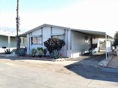 Santa Paula Mobile Home Active Under Contract: 1500 Richmond Road #30