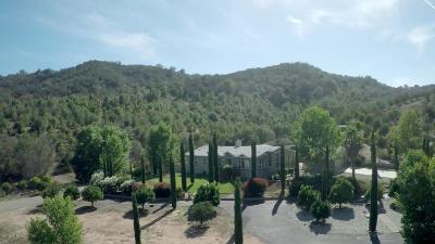Ojai Single Family Home For Sale: 888 Baldwin Road