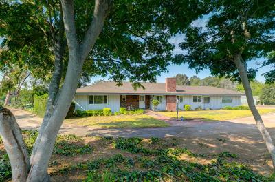 Camarillo Single Family Home For Sale: 434 Avocado Place
