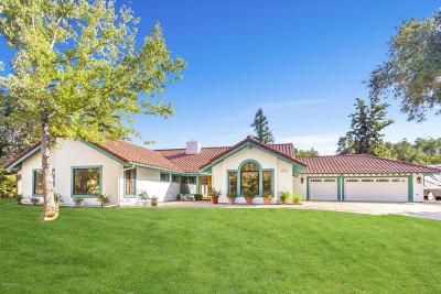 Single Family Home For Sale: 782 Quail Street