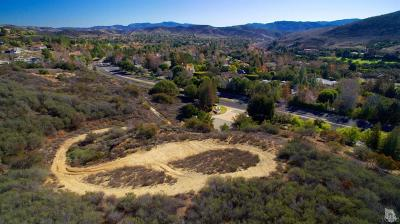 Ventura County Residential Lots & Land For Sale: 1547 Berryhill Circle