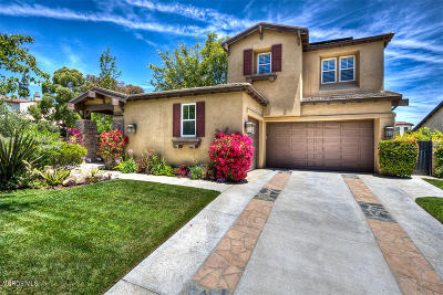Newbury Park Single Family Home For Sale: 1090 Via Palermo