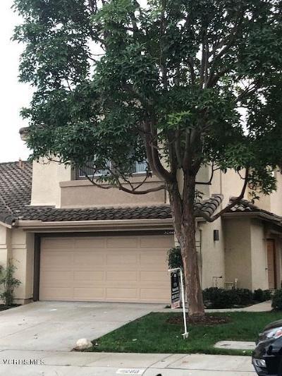 Camarillo Rental For Rent: 5288 San Francesca Drive