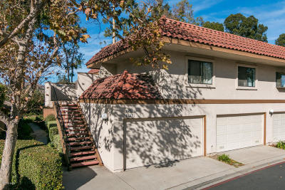 Ventura Single Family Home For Sale: 6727 Wordsworth Way