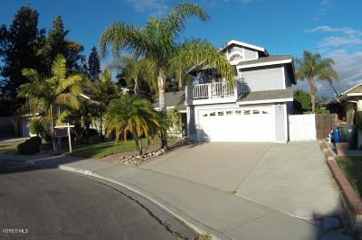 Ventura Single Family Home For Sale: 642 Rochester Court
