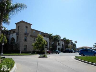 Camarillo Rental For Rent: 259 Riverdale Court #252