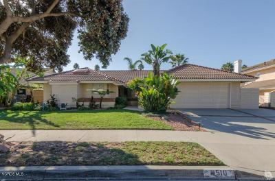 Oxnard Single Family Home For Sale: 1510 Holly Avenue