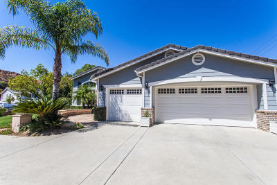 Simi Valley Single Family Home For Sale: 646 Muirfield Avenue